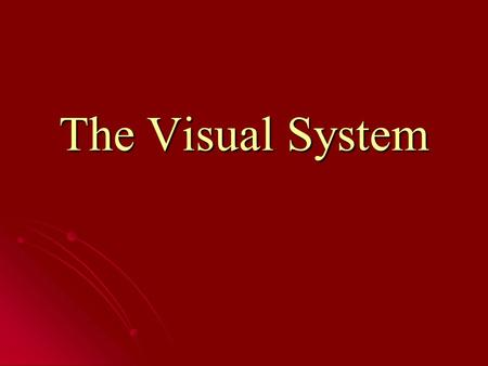 The Visual System. The Awareness Test Just for fun, let's test your awareness of your surroundings…