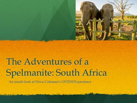 The Adventures of a Spelmanite: South Africa An inside look at Niwa Coleman's GSTEM Experience.