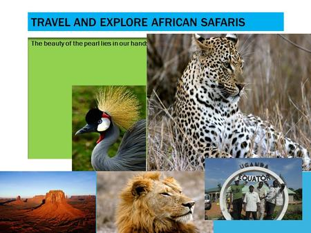 TRAVEL AND EXPLORE AFRICAN SAFARIS The beauty of the pearl lies in our hands.