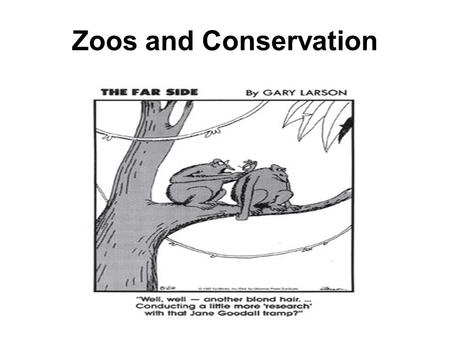 Zoos and Conservation.  The role of the zoo has evolved to prioritize research, education, and conservation  Some people still condemn the existence.