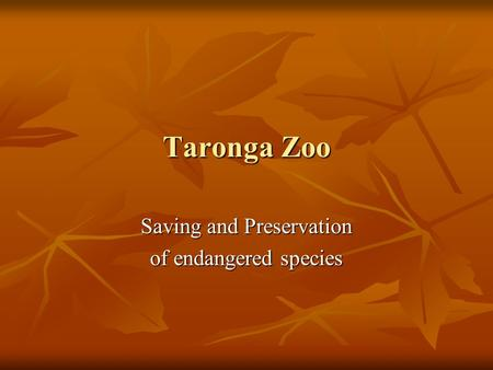 Taronga Zoo Saving and Preservation of endangered species.