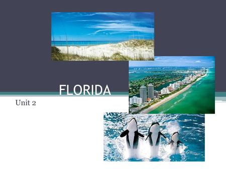 FLORIDA Unit 2. Panhandle Region North Florida West/Gulf Coast East/Atlant ic Coast South Florida Florida Keys Regions of Florida.