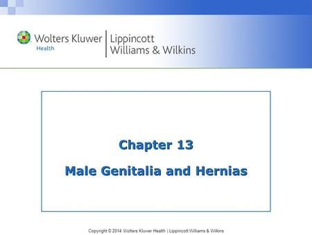 Copyright © 2014 Wolters Kluwer Health | Lippincott Williams & Wilkins Chapter 13 Male Genitalia and Hernias.