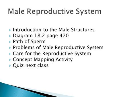  Introduction to the Male Structures  Diagram 18.2 page 470  Path of Sperm  Problems of Male Reproductive System  Care for the Reproductive System.