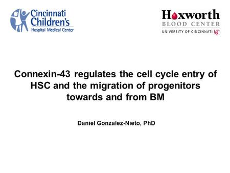 Connexin-43 regulates the cell cycle entry of HSC and the migration of progenitors towards and from BM Daniel Gonzalez-Nieto, PhD.