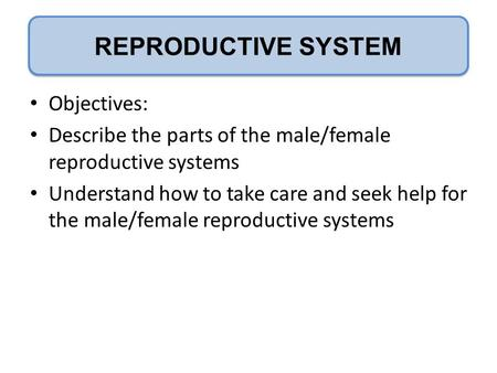 P REPRODUCTIVE SYSTEM Objectives: Describe the parts of the male/female reproductive systems Understand how to take care and seek help for the male/female.