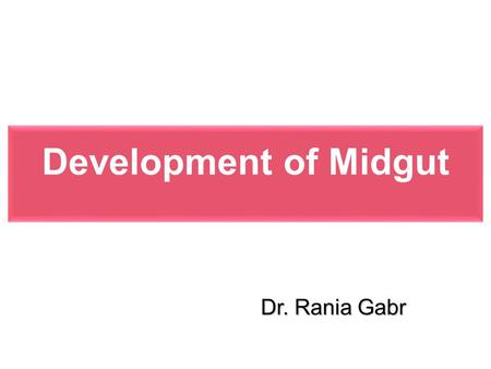 Development of Midgut Dr. Rania Gabr.