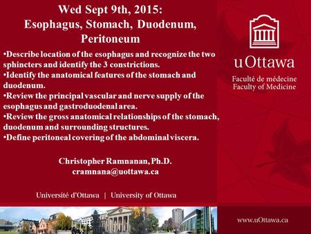 Wed Sept 9th, 2015: Esophagus, Stomach, Duodenum, Peritoneum Christopher Ramnanan, Ph.D. Describe location of the esophagus and recognize.