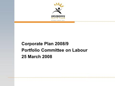 Corporate Plan 2008/9 Portfolio Committee on Labour 25 March 2008.