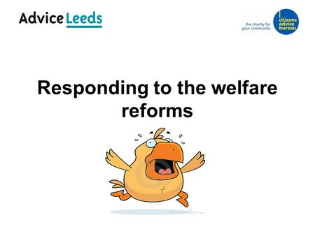 Responding to the welfare reforms. The picture in Leeds  Advice Leeds Partnership  Welfare Reform Strategy Board.