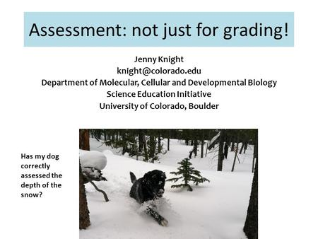 Assessment: not just for grading! Has my dog correctly assessed the depth of the snow? Jenny Knight Department of Molecular, Cellular.