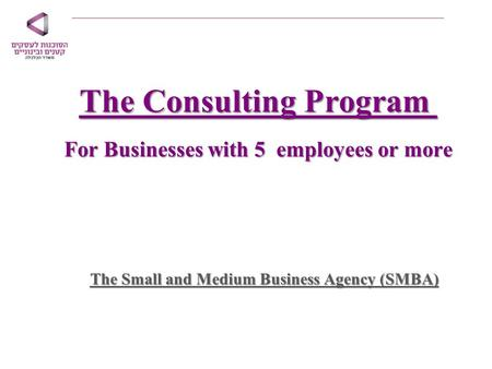 The Consulting Program For Businesses with 5 employees or more The Small and Medium Business Agency (SMBA)