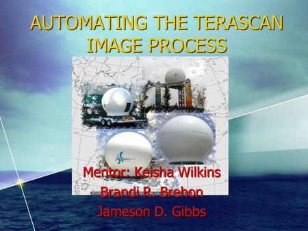 AUTOMATING THE TERASCAN IMAGE PROCESS Mentor: Keisha Wilkins Brandi R. Brehon Jameson D. Gibbs.