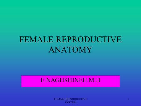 FEMALE REPRODUCTIVE SYSTEM 1 FEMALE REPRODUCTIVE ANATOMY E.NAGHSHINEH M.D.