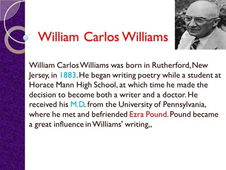 An analysis of william carlos williams story the use of force
