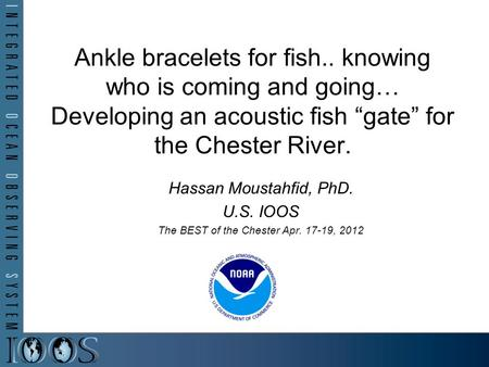 "Ankle bracelets for fish.. knowing who is coming and going… Developing an acoustic fish ""gate"" for the Chester River. Hassan Moustahfid, PhD. U.S. IOOS."