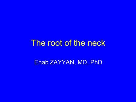 The root of the neck Ehab ZAYYAN, MD, PhD.