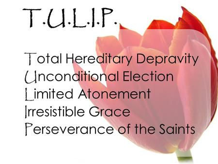 T.U.L.I.P. T otal Hereditary Depravity U nconditional Election L imited Atonement I rresistible Grace P erseverance of the Saints.