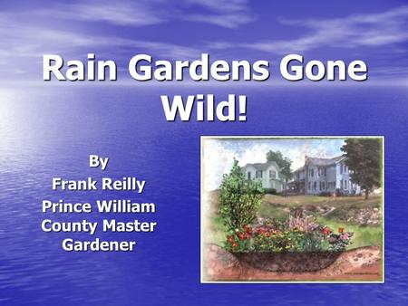 Rain Gardens Gone Wild! By Frank Reilly Prince William County Master Gardener.