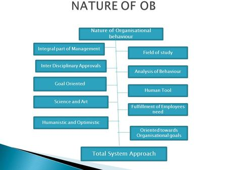 NATURE OF OB Total System Approach Nature of Organisational behaviour