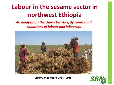 Labour in the sesame sector in northwest Ethiopia Study conducted in 2014 - 2015 An analysis on the characteristics, dynamics and conditions of labour.