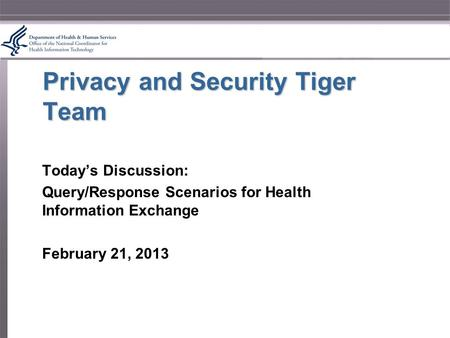 Privacy and Security Tiger Team Today's Discussion: Query/Response Scenarios for Health Information Exchange February 21, 2013.