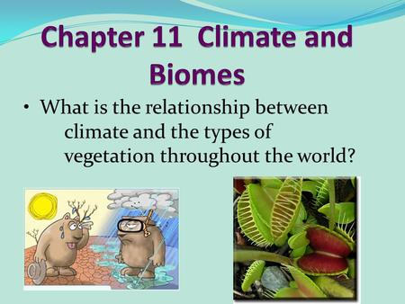 What is the relationship between climate and the types of vegetation throughout the world?