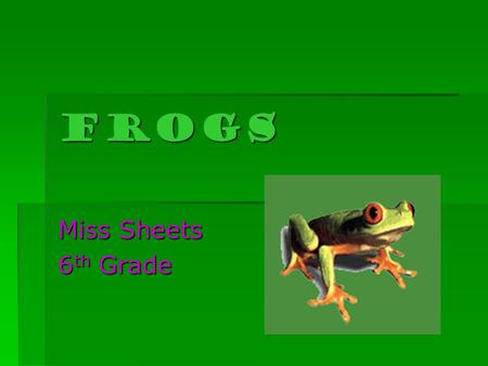 FROGS Miss Sheets 6 th Grade. What is a frog?  Frogs are members of the zoological class called Amphibia.  Amphibians are cold-blooded vertebrate animals.