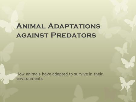 Animal Adaptations against Predators How animals have adapted to survive in their environments.