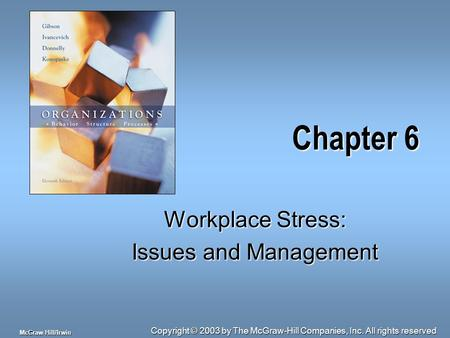 Copyright © 2003 by The McGraw-Hill Companies, Inc. All rights reserved McGraw-Hill/Irwin Chapter 6 Workplace Stress: Issues and Management.