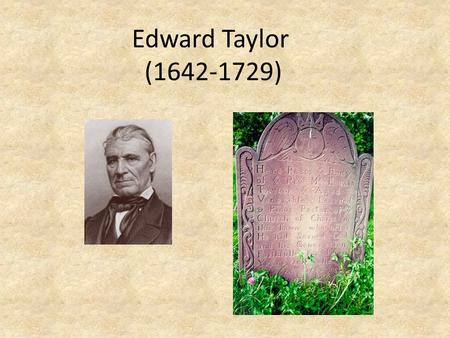 Edward Taylor (1642-1729). Biographical Background Born in England in 1642, son of a farmer. Educated by a nonconformist schoolmaster; increased persecution.