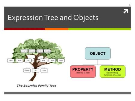  Expression Tree and Objects 1. Elements of Python  Literals, Strings, Tuples, Lists, …  The order of file reading  The order of execution 2.