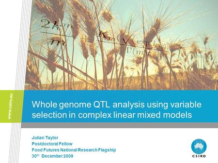 Whole genome QTL analysis using variable selection in complex linear mixed models Julian Taylor Postdoctoral Fellow Food Futures National Research Flagship.