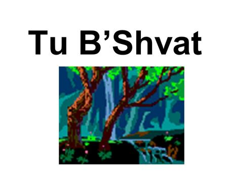 Tu B'Shvat. When Is It? This Year (5772 / 2011-2012),Tu B'Shvat, the New Year of the Trees, falls on Wednesday, February 8, 2012. As all Jewish Holidays.