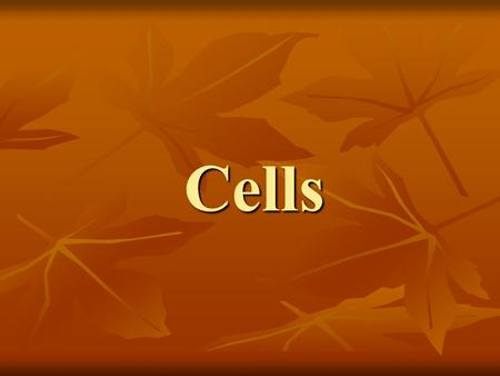 Cells. What are cells? Cells are the basic structure of all living things.