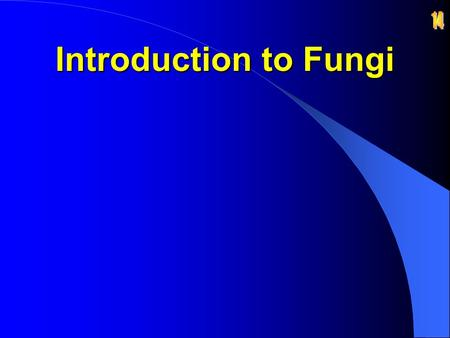 14 Introduction to Fungi.