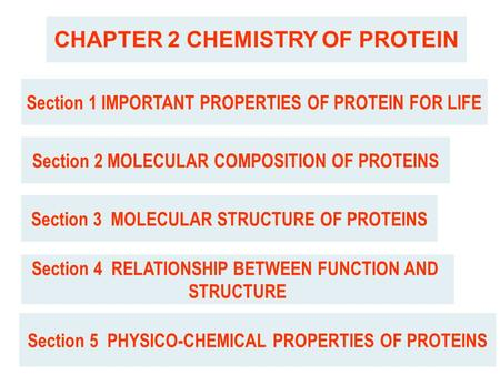 CHAPTER 2 CHEMISTRY OF PROTEIN