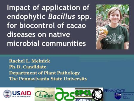 Impact of application of endophytic Bacillus spp