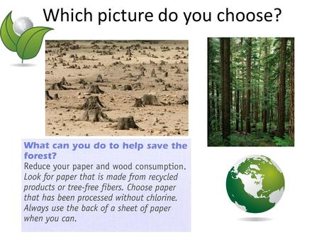 Which picture do you choose?. Where does paper come from? We get paper from trees in forests. If we use too many trees, forest disappear. If we don't.