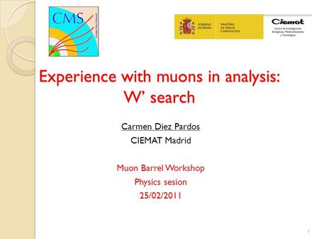 Experience with muons in analysis: W' search Carmen Diez Pardos CIEMAT Madrid Muon Barrel Workshop Physics sesion 25/02/2011 1.