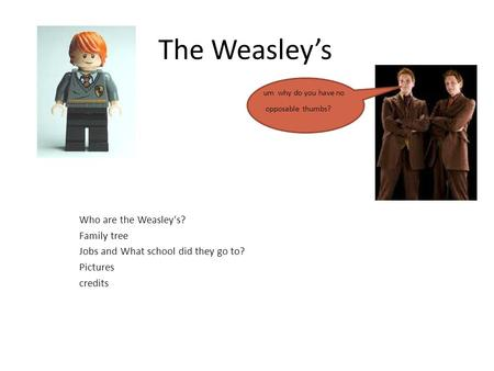 The Weasley's um why do you have no opposable thumbs? Who are the Weasley's? Family tree Jobs and What school did they go to? Pictures credits.