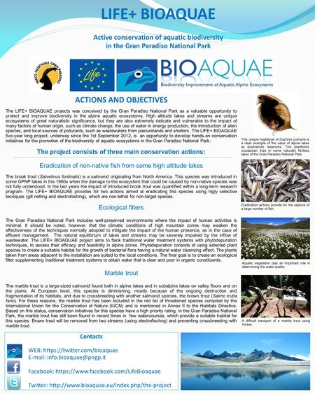 LIFE+ BIOAQUAE Active conservation of aquatic biodiversity in the Gran Paradiso National Park ACTIONS AND OBJECTIVES The LIFE+ BIOAQUAE projects was conceived.