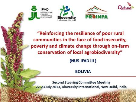 "(NUS-IFAD III ) BOLIVIA Second Steering Committee Meeting 22-23 July 2013, Bioversity International, New Delhi, India ""Reinforcing the resilience of poor."