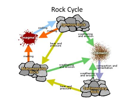 Rock Cycle. Sedimentary Rocks Fossil source rock Made from weathered and eroded igneous and metamorphic rocks Indicate past climates/environments Petroleum,