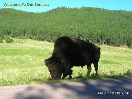 Welcome To Our Services Custer State Park, SD. Let's Worship In Spirit & In Truth  Song Leader – Chris Craig ♫ First Hymn # ♫ Second Song #  First Prayer.