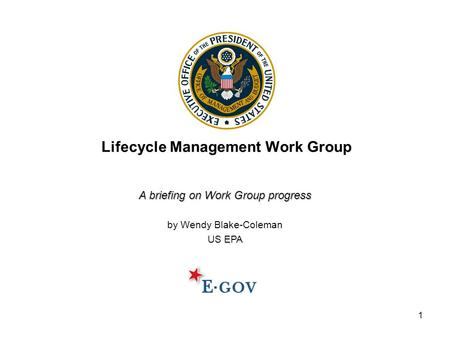1 Lifecycle Management Work Group A briefing on Work Group progress by Wendy Blake-Coleman US EPA.