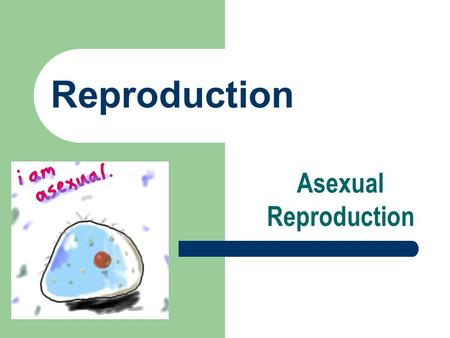 Reproduction Asexual Reproduction. New organisms develop from cells of the parent – identical to parent.