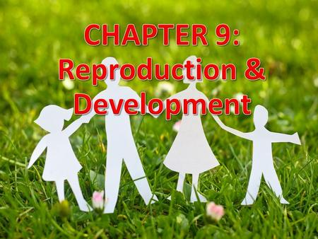 1. Subtopics 9.1 - Asexual reproduction in plants & animals 9.2 - Sexual reproduction in flowering plant 9.3 - Human reproductive system 9.4 - Fertilization.