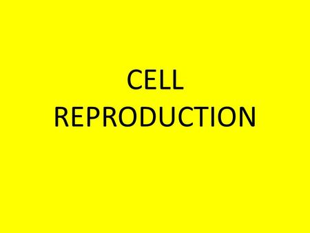 CELL REPRODUCTION. WHY DO CELLS DIVIDE? TO CREATE NEW CELLS TO REPLACE DEAD CELLS TO ALLOW GROWTH TO REPAIR DAMAGED OR INJURED CELLS.