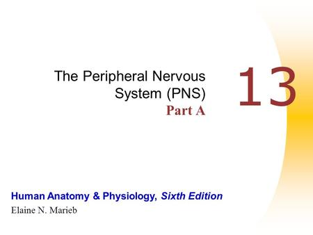 Human Anatomy & Physiology, Sixth Edition Elaine N. Marieb 13 The Peripheral Nervous System (PNS) Part A.